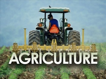 Farming-agriculture-MGN_3811082_ver1.0