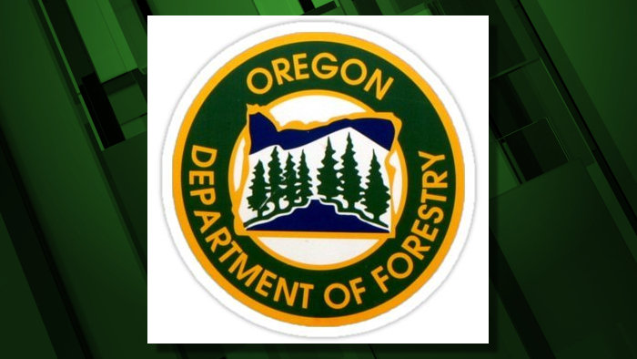 Oregon20Department20of20Forestry20logo202019_1559940058935.jpg_38624312_ver1.0