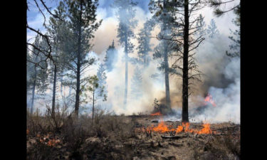 Prescribed burn west of Sunriver COFMS